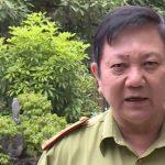 Sự thực về rừng tự nhiên ở Lang Chánh bị chặt phá