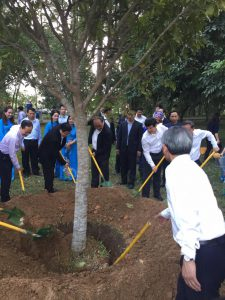 Tết trồng cây và trồng rừng vụ Xuân năm 2019: Thanh Hóa đạt kết quả khá