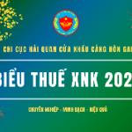 Biểu thuế XNK 2020