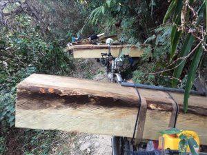 Bộ NN-PTNT báo cáo Thủ tướng vụ phá rừng tại Kon Tum