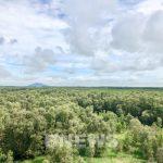 Năm 2021 sẽ thu 2.800 tỷ đồng tiền dịch vụ môi trường rừng